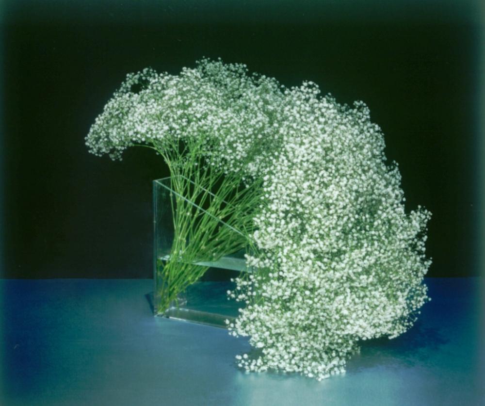 【オーダーメイドアクリル什器】斜めカットのアクリル製花器